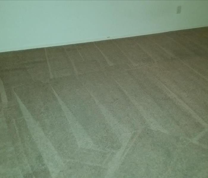 Sunday Carpet Cleaning in Tucson After