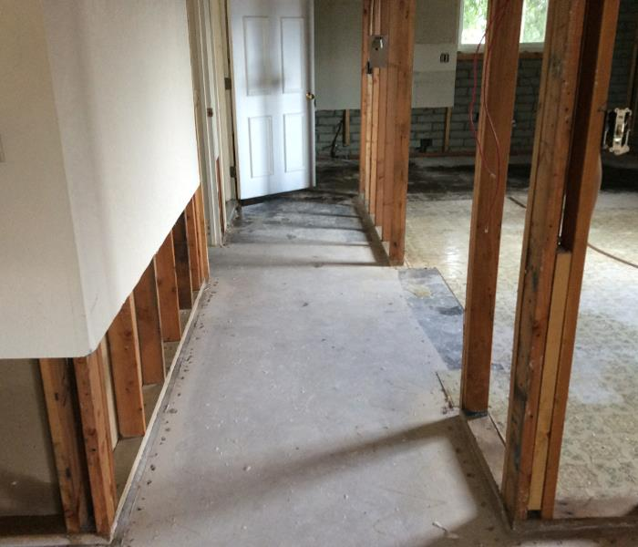 Mold Remediation Flooded Homes and Mold Growth