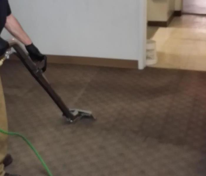 Cleaning Local Carpet Cleaners vs. SERVPRO Carpet Cleaning