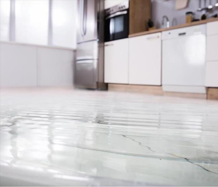 Water Damage Professional Remediation for Water Damage to Floors in Green Valley